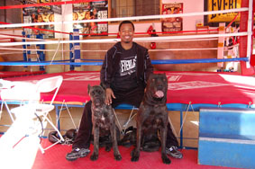 Proud trainer for Former Lightweight, Welterweight and Jr. Middleweight Champion of the World Sugar Shane Mosley and his dogs Nino and Chloe