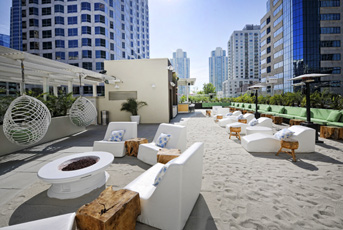 Best Dog Friendly Hotels Southern California